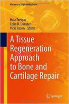 A Tissue Regeneration Approach To Bone And Cartilage Repair