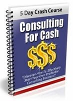 Consulting For Cash Discover How To Effectively Start Your Own Profitable Consulting Business