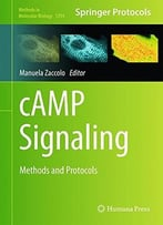 Camp Signaling: Methods And Protocols (Methods In Molecular Biology)