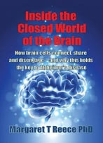 Inside The Closed World Of The Brain: How Brain Cells Connect, Share And Disengage