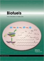 Biofuels: From Microbes To Molecules