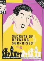 Secrets Of Opening Surprises: V. 6 By Jeroen Bosch