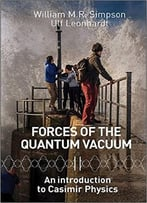 Forces Of The Quantum Vacuum: An Introduction To Casimir Physics