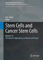 Stem Cells And Cancer Stem Cells, Volume 13: Therapeutic Applications In Disease And Injury