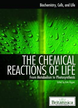 an introduction to the history of chemical reactions Chemical reactions lab chemical equations represent what occurs in a chemical reaction for with what you discussed in the introduction about reactions in.
