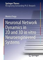 Neuronal Network Dynamics In 2d And 3d In Vitro Neuroengineered Systems