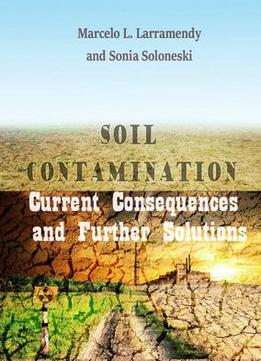 Soil contamination current consequences and further for Soil 2017 book