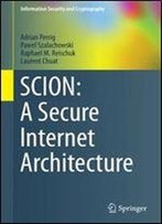 Scion: A Secure Internet Architecture (Information Security And Cryptography)
