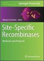 Site-Specific Recombinases: Methods And Protocols (Methods In Molecular Biology)