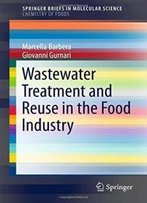 Wastewater Treatment And Reuse In The Food Industry (Springerbriefs In Molecular Science)
