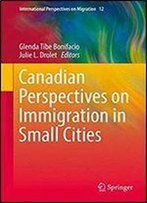 Canadian Perspectives On Immigration In Small Cities (International Perspectives On Migration)