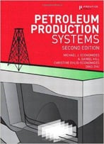Petroleum Production Systems, 2 Edition