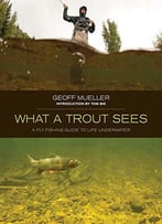 What A Trout Sees: A Fly-Fishing Guide To Life Underwater