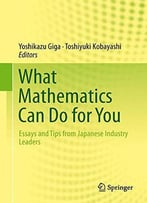 What Mathematics Can Do For You: Essays And Tips From Japanese Industry Leaders