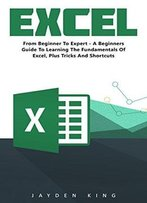 Excel: From Beginner To Expert: A Beginners Guide To Learning The Fundamentals Of Excel Plus Tricks And Shortcuts