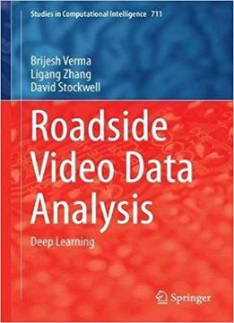Roadside Video Data Analysis: Deep Learning