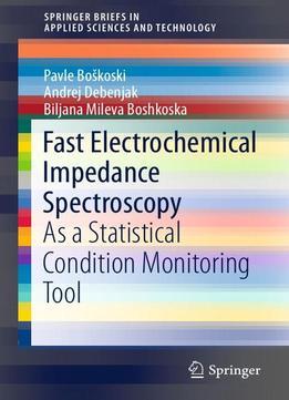 ebook Empirical Software Engineering and Verification: International Summer
