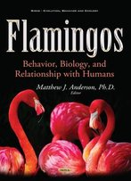 Flamingos: Behavior, Biology, And Relationship With Humans