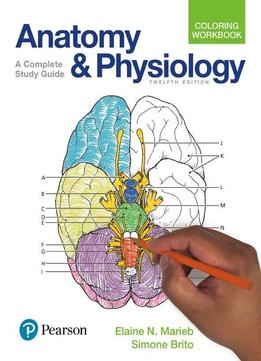 Anatomy And Physiology Coloring Workbook A Complete Study