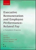 Executive Remuneration And Employee Performance-Related Pay: A Transatlantic Perspective (Fondazione Rodolfo Debendetti Reports)