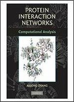 Protein Interaction Networks: Computational Analysis