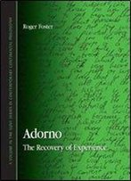 Roger Foster - Adorno: The Recovery Of Experience