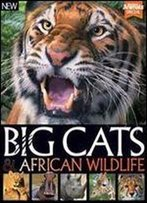 World Of Animals Book Of Big Cats And African Wildlife 2nd Edition
