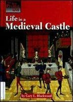 Life In A Medieval Castle (How People Live)
