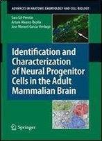 203: Identification And Characterization Of Neural Progenitor Cells In The Adult Mammalian Brain (Advances In Anatomy, Embryology And Cell Biology)