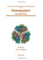 Photosystem I (Advances In Photosynthesis And Respiration)