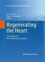 Regenerating The Heart: Stem Cells And The Cardiovascular System (Stem Cell Biology And Regenerative Medicine)