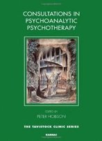 Consultations In Psychoanalytic Psychotherapy (The Tavistock Clinic Series)