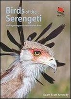 Birds Of The Serengeti: And Ngorongoro Conservation Area (Wildlife Explorer Guides)