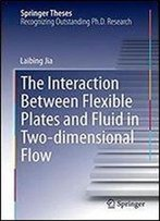 The Interaction Between Flexible Plates And Fluid In Two-Dimensional Flow (Springer Theses)