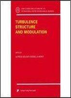 Turbulence Structure And Modulation