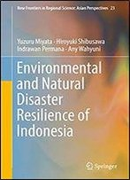 Environmental And Natural Disaster Resilience Of Indonesia (New Frontiers In Regional Science: Asian Perspectives Book 23)