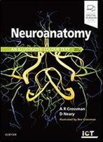 Neuroanatomy: An Illustrated Colour Text 6th Edition