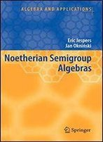 Noetherian Semigroup Algebras (Algebra And Applications)