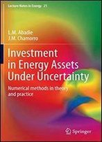 Investment In Energy Assets Under Uncertainty: Numerical Methods In Theory And Practice