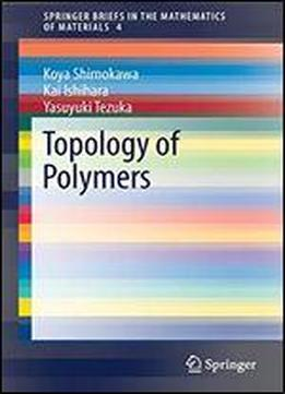 Topology Of Polymers (springerbriefs In The Mathematics Of Materials)