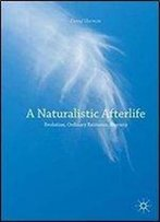 A Naturalistic Afterlife: Evolution, Ordinary Existence, Eternity