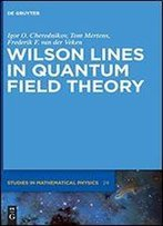 Wilson Lines In Quantum Field Theory (De Gruyter Studies In Mathematical Physics)