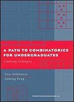 A Path To Combinatorics For Undergraduates: Counting Strategies