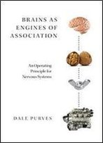 Brains As Engines Of Association: An Operating Principle For Nervous Systems