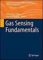 Gas Sensing Fundamentals (Springer Series On Chemical Sensors And Biosensors Book 15)