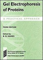 Gel Electrophoresis Of Proteins: A Practical Approach (Practical Approach Series) 3rd Edition