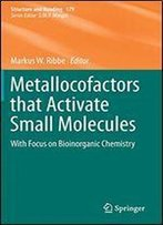 Metallocofactors That Activate Small Molecules: With Focus On Bioinorganic Chemistry