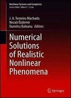 Numerical Solutions Of Realistic Nonlinear Phenomena