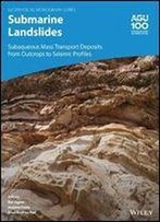 Submarine Landslides: Subaqueous Mass Transport Deposits From Outcrops To Seismic Profiles