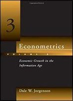 Econometrics, Vol. 3: Economic Growth In The Information Age